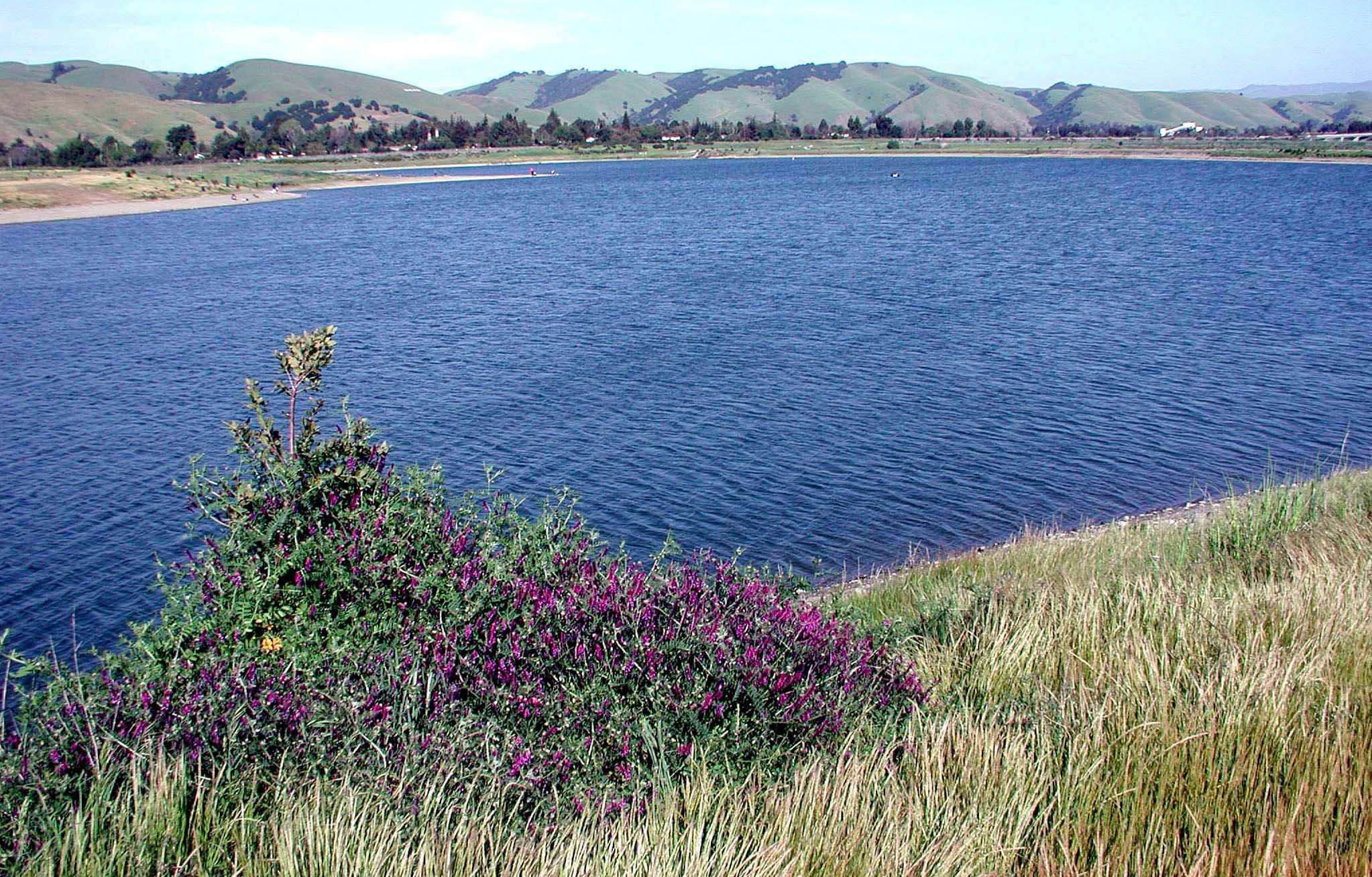 Alameda county water district official website quarry for Quarry lakes fishing
